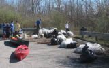 Volunteers gather bags of debris during a cleanup with the Harpeth River Watershed Association in...
