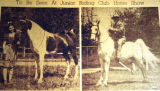 To be seen at Junior Riding Club Horse Show, from the Nashville Times, 1940