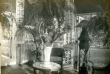 View of Conservatory at Bonnie Brae residence, Nashville, Tennessee, n.d.