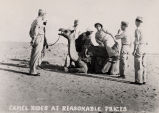 Camel rides at reasonable prices, circa 1943