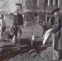 Tree planting event at City Office Building on Second Avenue South, Nashville, Tennessee, 1961...
