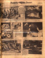 Photomontage of birds raised and released in middle Tennessee. Nashville Banner, 1932 November 27.
